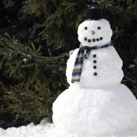 Winter_Snowman_with_a_scarf_069776_