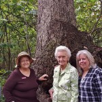The group poses next to the Burr Oak for a picture. (Left-to-Right) Dorothy Erickson, Mary Louise Taylor, Alice Shelor, and Karol Swain.